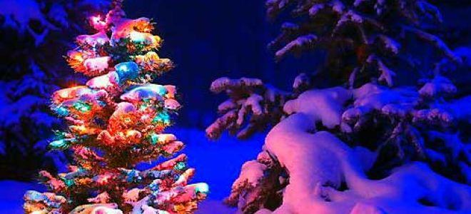 Праздник Новый год — история, традиции и приметы