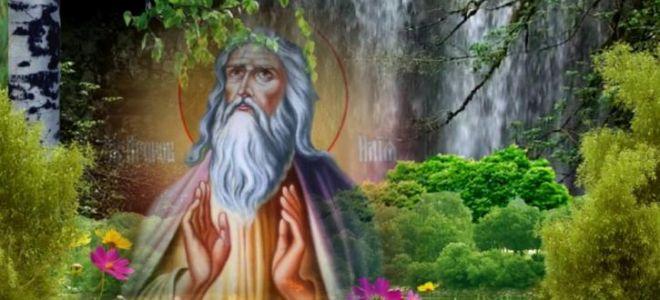Ильин день — традиции, приметы, поговорки