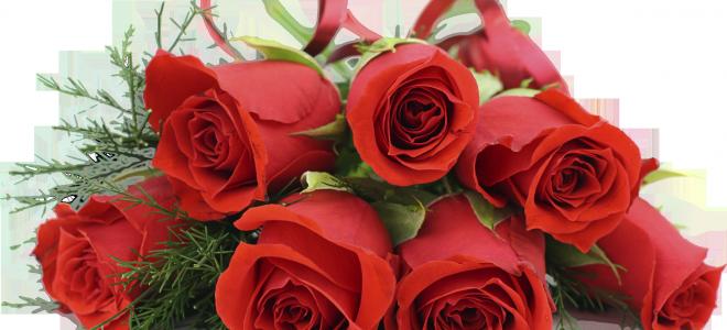 Сколько роз можно дарить по приметам