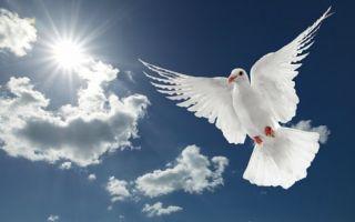 Обряды в Благовещение