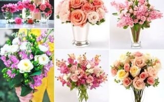 Какие цветы дарить на свадьбу