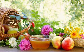 Маковый, Первый или Медовый Спас — традиции, обряды, приметы