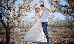 Свадьба в мае — традиции, приметы, удачные даты