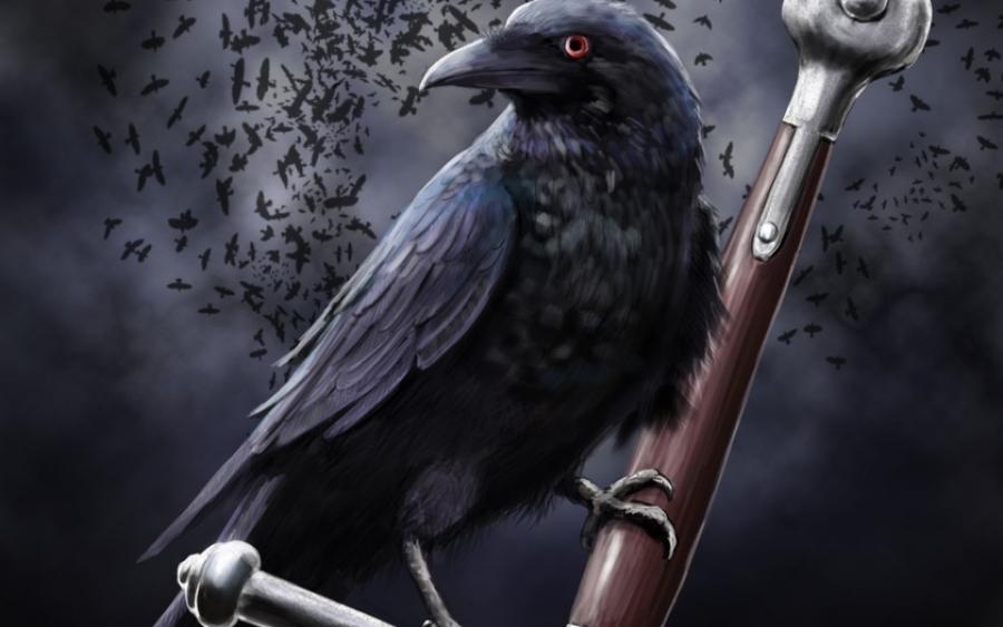 К чему каркает ворона на улице, над головой, под окном