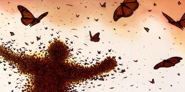 бабочка в доме примета