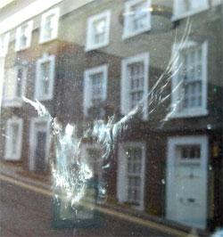 птица стукнулась в окно